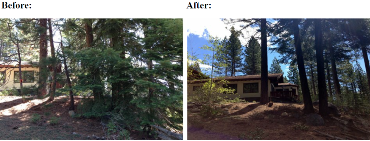 tahobefore and after dspace